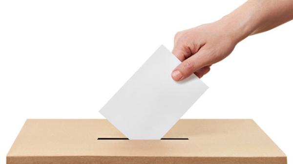 Izbori za mjesne odbore u nedjelju 13. studenoga